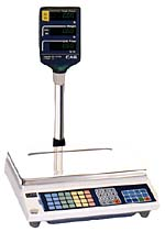 CAS AP - 15 Stand Alone Scale